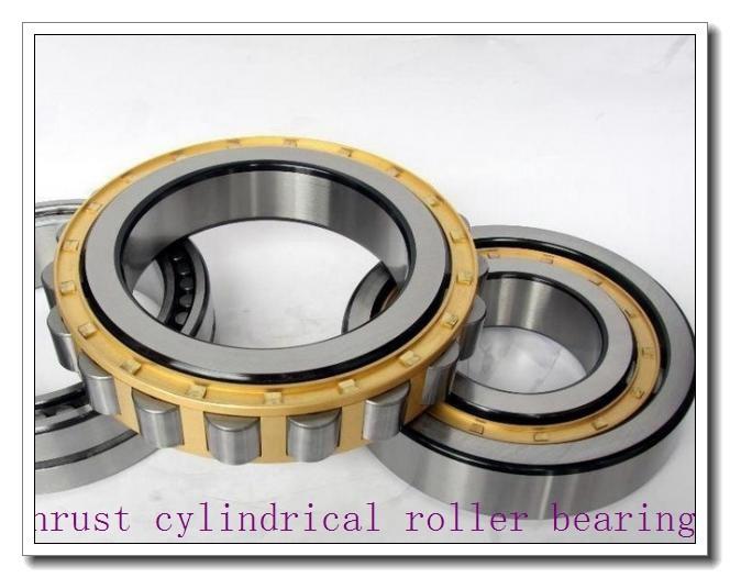 7549420 Thrust cylindrical roller bearings